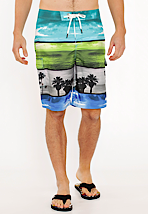 Nike 6.0 - Scout Photo Lush Green/Anthracite/Sail - Board Shorts